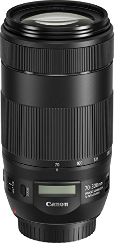 Canon Telezoomobjektiv EF 70-300mm F4-5.6 IS II USM für EOS (67mm Filtergewinde, AF-Motor, Nano USM), schwarz
