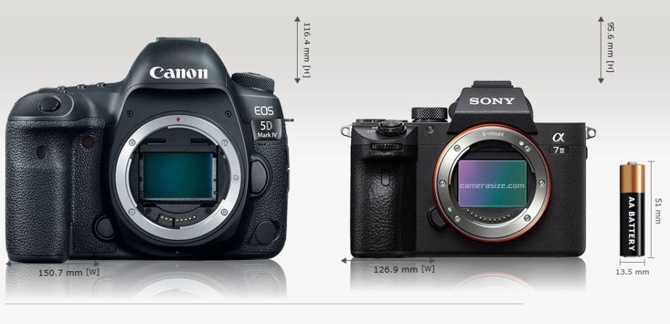 Systemkamera oder Spiegelreflex kaufen?
