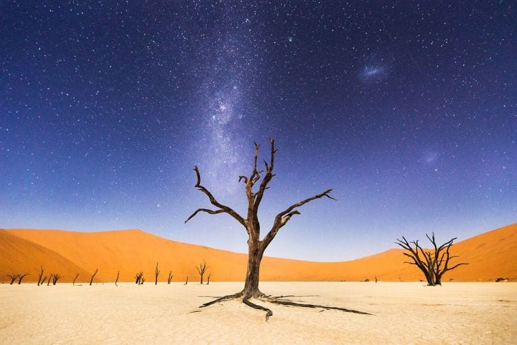 """A Night at Deadvlei The night before returning to Windhoek, we spent several hours at Deadveli. The moon was bright enough to illuminate the sand dunes in the distance, but the skies were still dark enough to clearly see the milky way and magellanic clouds. Deadveli means """"dead marsh."""" The camelthorn trees are believed to be about 900 years old, but have not decomposed because the environment is so dry. Photo and caption by Beth McCarley/National Geographic Traveler Photo Contest"""