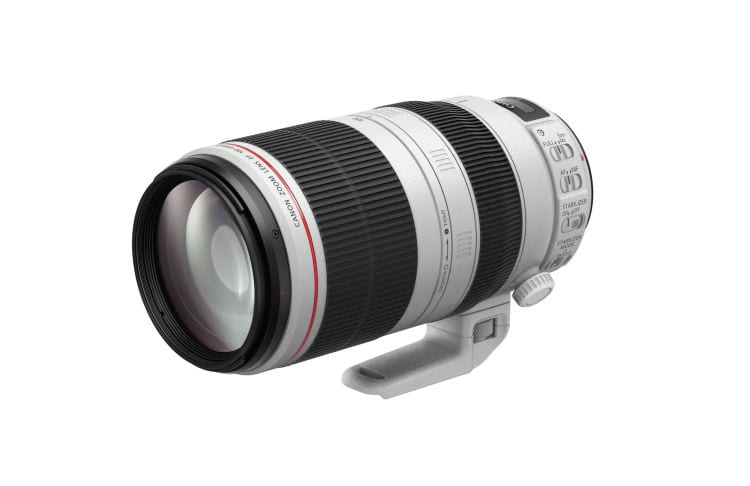 EF 100-400mm f4.5-5.6L IS II USM  (3)