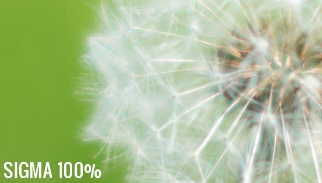 sigma-100-crop-650x371
